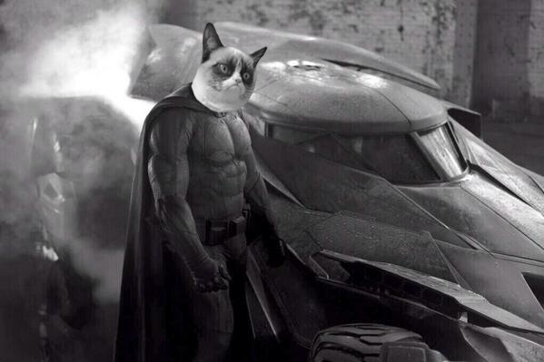 sad_batman_grumpycat1